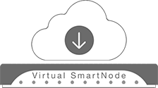 Virtual SmartNode - SmartNode Virtual Enterprise Session Border Controller