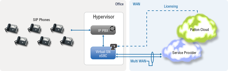 software sbc or virtual sbc for SIP trunking, with SBC Access Router