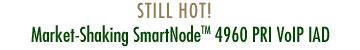 STILL HOT! - Market-Shaking SmartNode™ 4960 PRI VoIP IAD