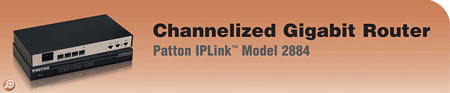IPLink� Model 2884 Channelized Gigabit T1/E1 Router