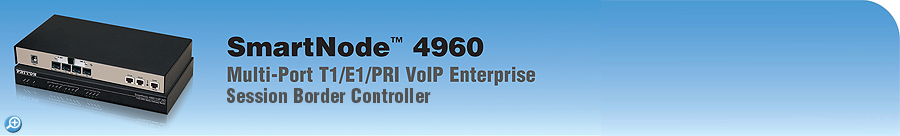 SmartNode 4960 ESBR 15-to-120-call T1/E1/PRI VoIP Enterprise Session Border Controller IAD